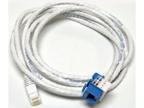 CM11355 6ft CAT6/RJ-45 F/M SNAP IN ASSEMBLY Cable (Blue) by Altinex