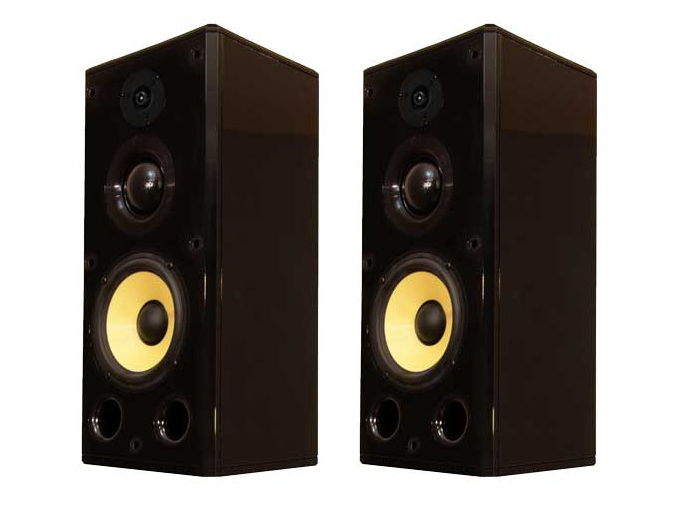 S1.8 8in 3-Way Freestanding Speaker/55 Hz - 22 kHz/Pair by Induction Dynamics