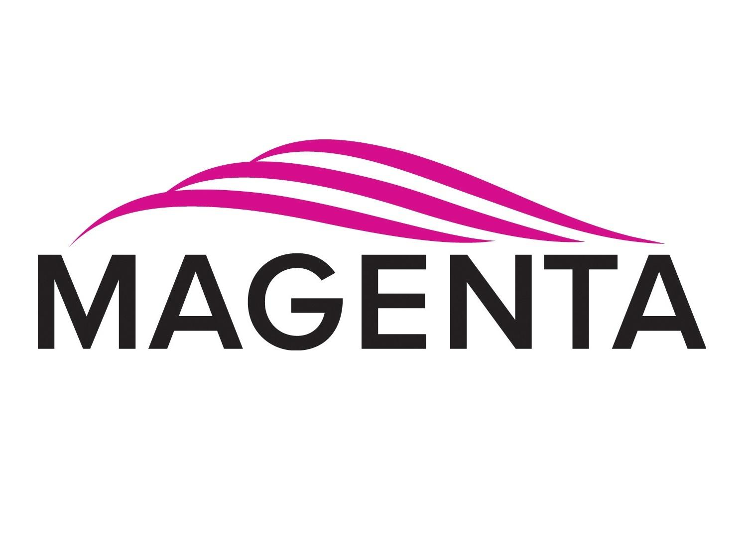 2390023-01 4U Vertical Rackmount Kit Reverse (Fits 10 Voyager Units w Video/Core Modules/Rear Panel Out) by Magenta Research